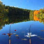 Русская рыбалка 3: Озеро — Как, Где и на Что ловить