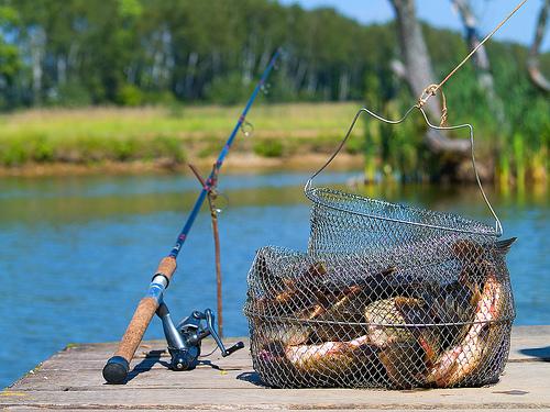 Картинки по запросу рыбалка