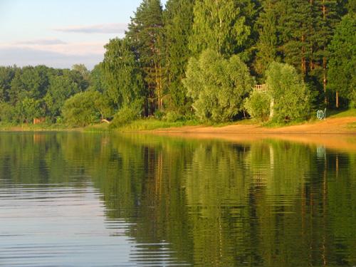 Волчихинское водохранилище рыбалка