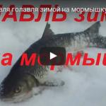 Ловля голавля зимой видео
