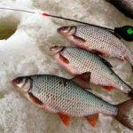 Рыбалка на плотву в феврале