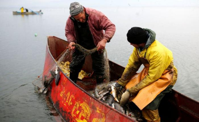 прикормка для весенней рыбалки своими руками