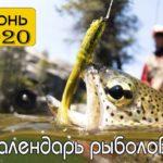 Лунный календарь клева рыбы на Июнь 2020 года