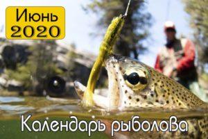 Календарь рыболова на июнь 2020